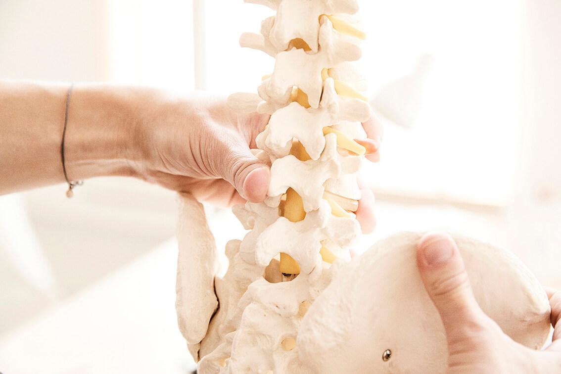 Bækken Ryg Osteopati